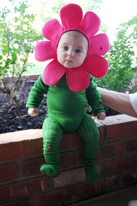 Dress your baby in green and add a pink flower crown. Spice it up with some lady bugs and voila! You have a very cute baby costume.  sc 1 st  Cutest Babies & 30 Best Baby Halloween Costumes For 2017 - Cutest Babies